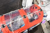pic of stretcher  - Biohazard medical team with sick patient in stretcher virus contamination - JPG