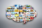 picture of working animal  - Speech bubble design element made of pictures - JPG