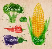 stock photo of turnips  - Vegetables set drawn watercolor blots and stains with a spray corn - JPG