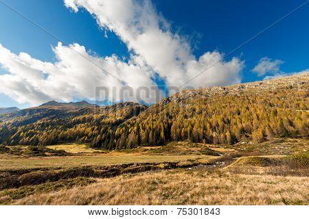 Adamello - Trentino Italy