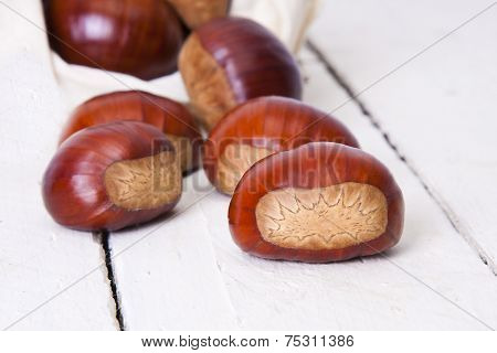 Autumn nuts