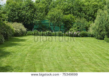 Green lawn.