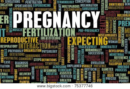 Pregnancy Concept Preparation of an Expecting Parent