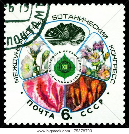 Vintage Postage Stamp. International Botanikal Congress. Leningrad.