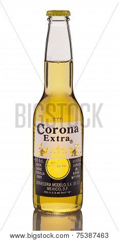 One Bottle Of Corona Extra Beer