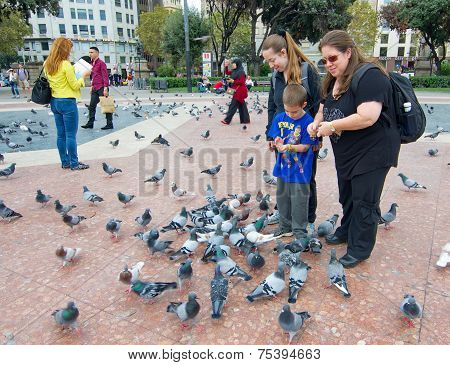 People Feeding The Pigeons In Catalonia Plaza, Barcelona