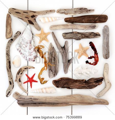 Shell and driftwood abstract collage over wooden white background.