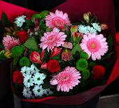 picture of flower shop  - Beautiful flowers in the flowers shop  - JPG