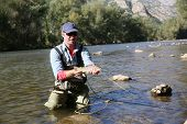stock photo of fly rod  - Fly fisherman catching a fario trout in river - JPG