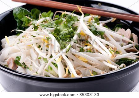 Vietnamese Pho Soup, An Ethnic Meal Of Chicken Soup, Broth, Bean