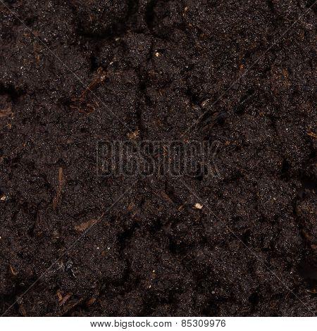 Garden Beds Of Fertile Soil Close-up