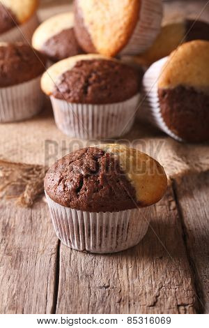 Beautiful Two-tone Chocolate Muffins Close-up, Vertical