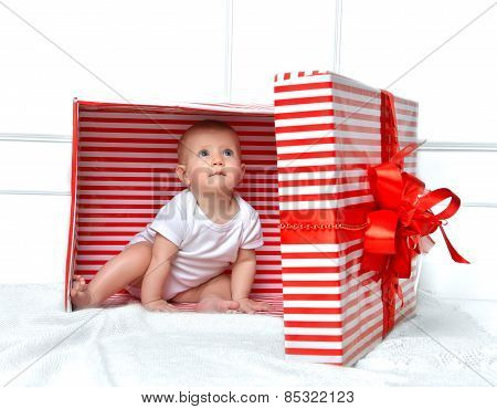 Infant Child Baby Toddler Kid Sitting In Presents Gift For Celebration.