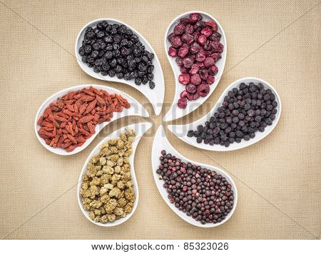 dried superfruit collection - goji berry, white mulberry, blueberry, aronia, elderberry and cheery in teardrop shaped bowls