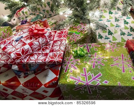 Christmas presents under a tree with a cat in the background