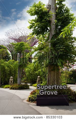 SINGAPORE - JANUARY 27, 2015: Park Gardens by the Bay is spanning 101 hectares in central Singapore. Park is intended to become Singapore's premier urban outdoor recreation space and a national icon.