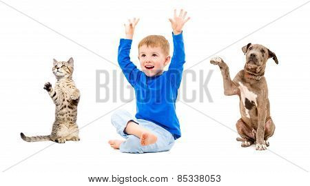Joyful boy, kitten and puppy