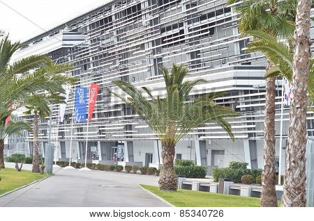 Palm trees in Sochi Olympic Park