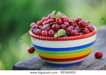 Fresh Cherries In Color Plate On Wooden Table In The Garden
