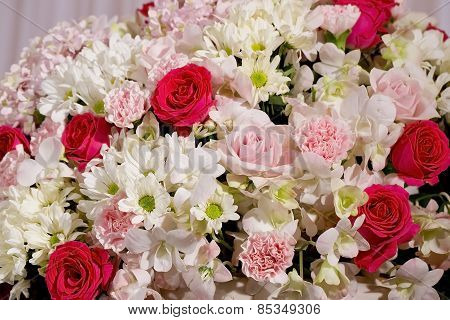 Colorful Fower Background - Natural Texture Of Love - Red And Pink Roses