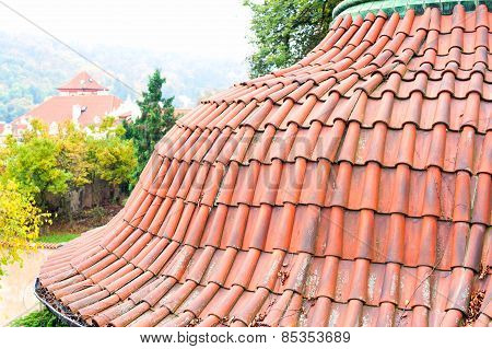 Old Red Tile Roof Of Prague. Top View.