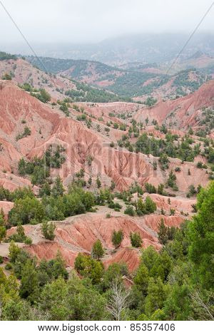 Badlands and conifer forest in High Atlas, mount Toubkal area. Morocco, Africa.