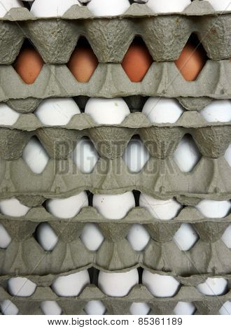 Picture Of  Fresh Eggs For Sale At A Market