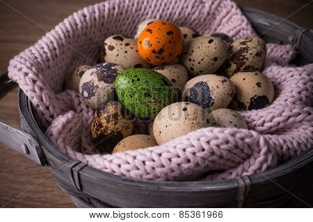 Quail Eggs  In A Basket And  One Orange , Green Egg With Pink Knit
