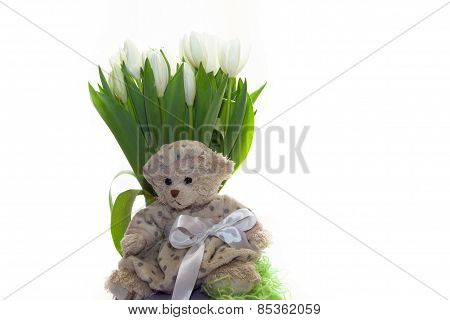 Teddy Bear-girl Sitting On A Background Of A Bouquet Of White Tulips In A Beret And A White Bow. On