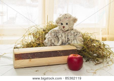 Girl teddy bear sitting on logs surrounded by hay on the background of willow window.