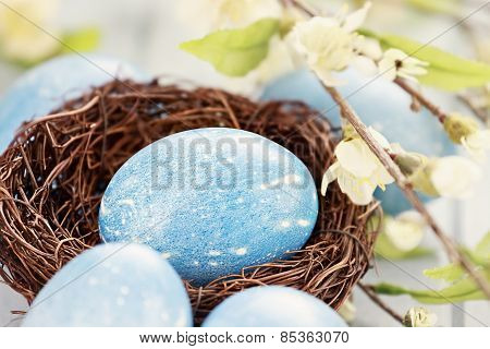 Blue Easter Egg In Nest