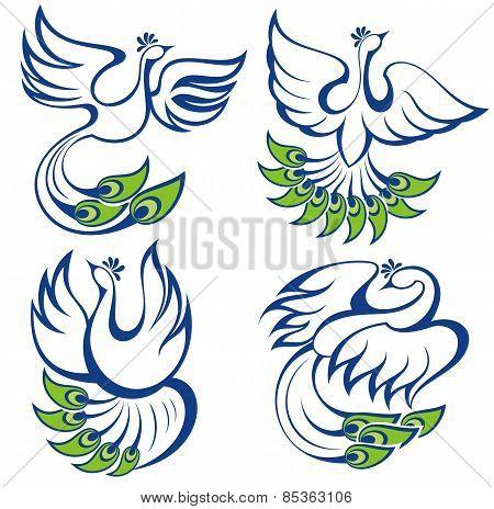 Vector illustration of peacocks