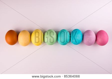 Pastel Easter Eggs Row  Isolated On White