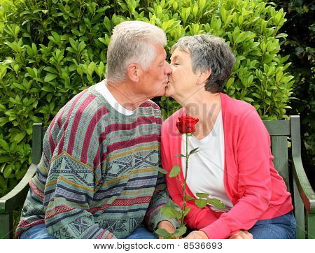 Elderly Couple - He gives her a Red Rose