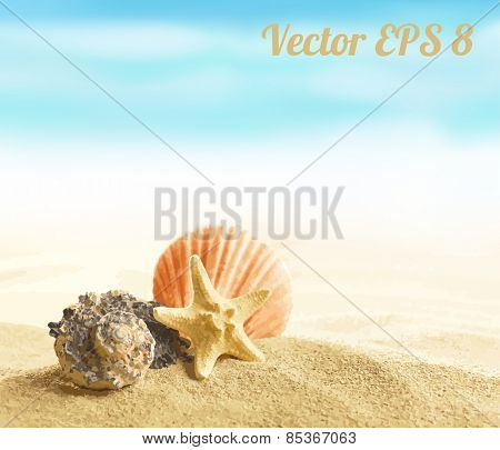 Shell and starfish on sandy beach vector illustration EPS 8.