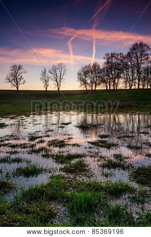 Field With Puddles