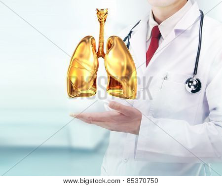 Doctor With Stethoscope And Golden Lungs On The  Hands In A Hospital