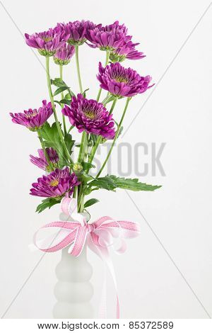 Burgundy Daisies In A Vase.