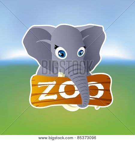 Grey elephant holding zoo plate