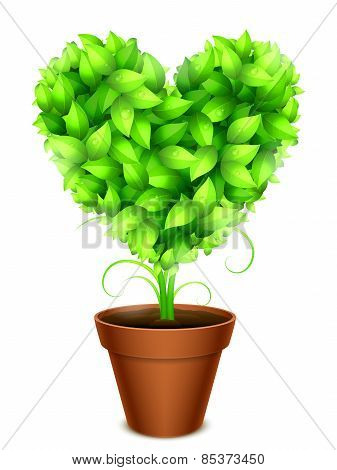 Green Leaves Heart