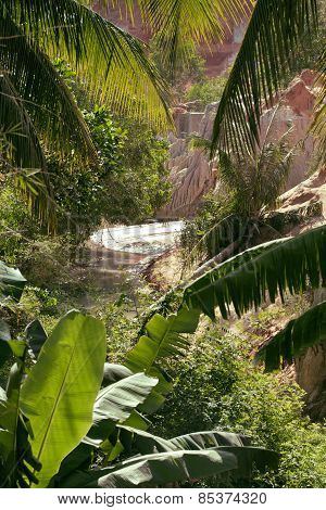 green landscape with palms and white sand rocks, fairy stream vi