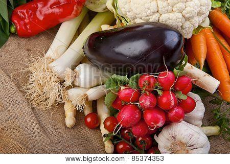 Assortment of various fresh organic vegetables from the garden