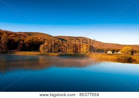 Beautiful Lake And Amazing Forest