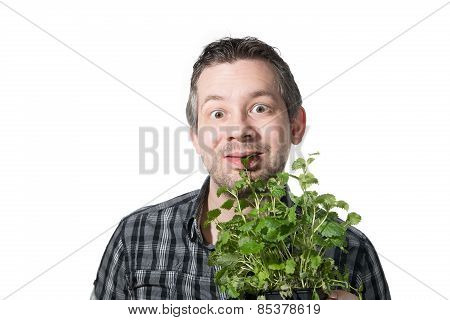 Eating A Plant