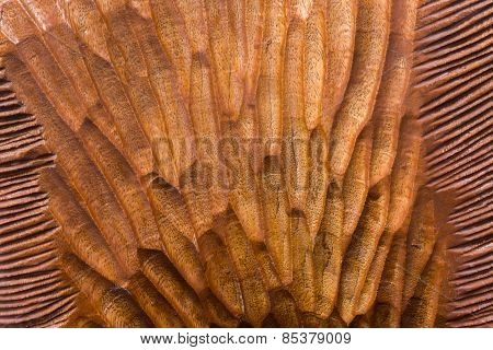 Carved Tree Texture With Light Brown Mixed Pattern On Wood Background