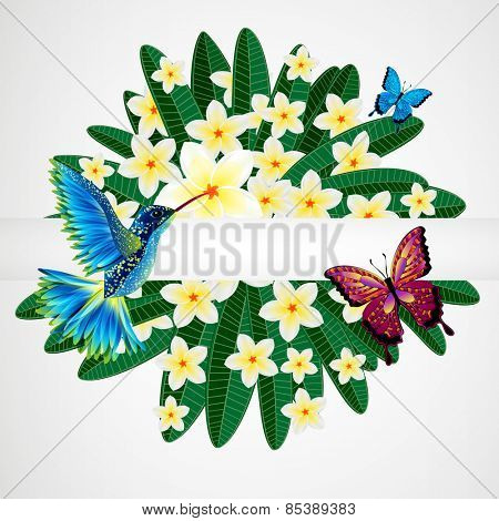 Floral design background. Plumeria flowers with bird, butterflies.