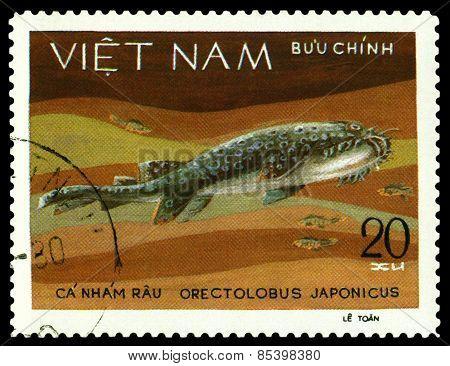 Vintage  Postage Stamp. Orectolobus Japonicus.