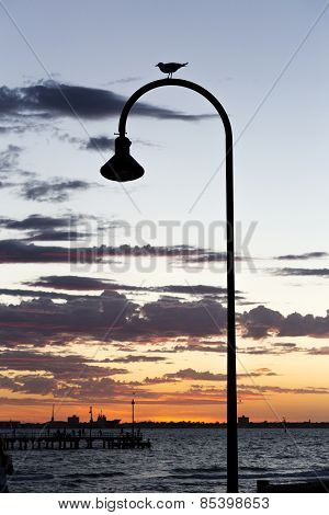 Vintage streetlight With Seagull And Sunset At The Bay