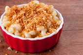 picture of noodles  - macaroni noodles and cheese with toasted breadcrumb topping - JPG
