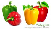 image of pepper  - Bell peppers - JPG